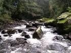 Programa no RS ensina a cuidar de nascentes e reservatórios de água