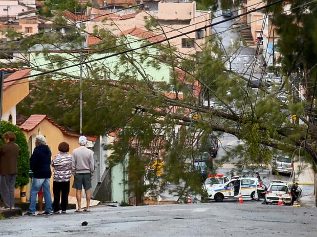 Árvores caíram em bairros de Varginha (MG) (Foto: Reprodução EPTV)