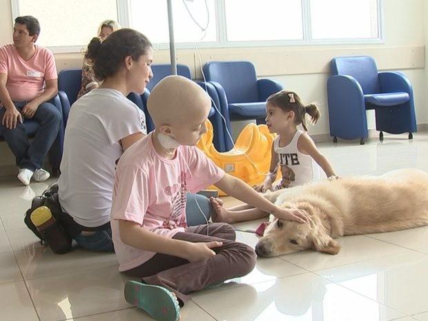Cão começam a ser utilizados no tratamento de crianças em Rio Preto (Foto: Reprodução/TV TEM)