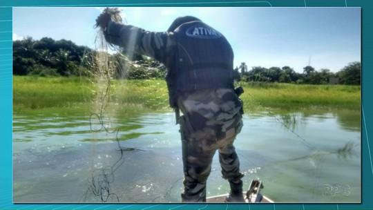 Período de restrição à pesca de espécies nativas termina nesta terça