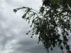 Previsão de pancadas de chuva forte na quinta-feira em MS, diz Inmet