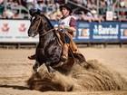 Cavalo de São Lourenço do Sul vence o Freio de Ouro 2015 na Expointer