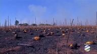 Tempo seco favorece os incêndios e pode atrasar o plantio