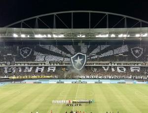 Botafogo x Olimpia Mosaico Nilton Santos Pré-Libertadores (Foto: Felippe Costa)