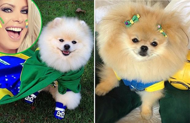 Joy e Fóffita, pets da atriz e apresentadora Karina Bacchi, também entraram no clima verde e amarelo usando acessórios divertidos (Foto: Reprodução/Instagram)