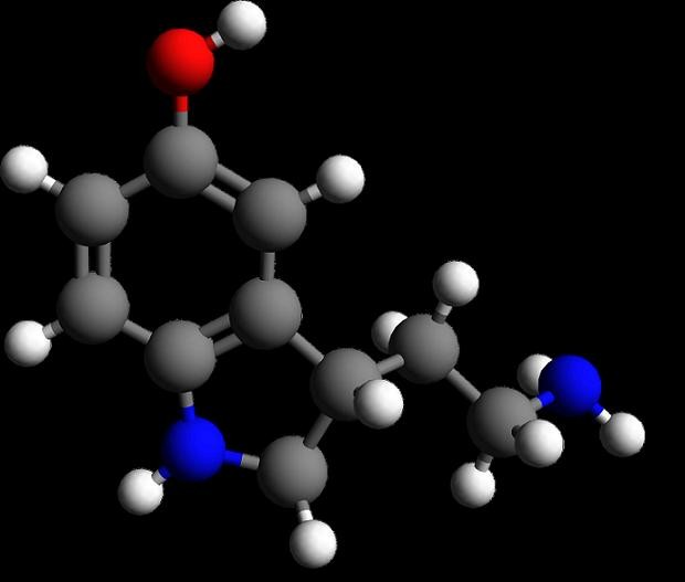 Serotonina (Foto: Reprodução)