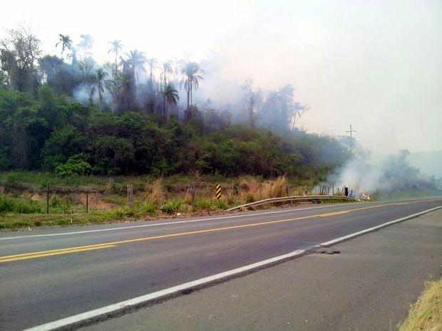 Incêndio destriui área de 65 campos de futebol em Rodovia de Charqueada (Foto: Walmyr Antonelli Brino/Arquivo pessoal)