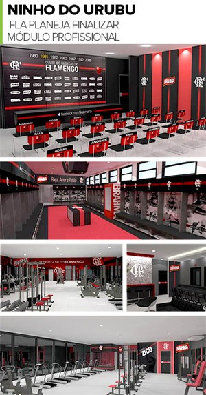 MOSAICO - Flamengo estrutura profissional (Foto: Divulgação)