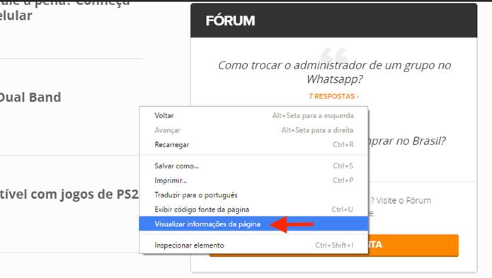 Acessando as informações de uma página com o Google Chrome (Foto: Reprodução/Marvin Costa)
