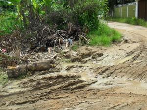 'Eu ando até o ponto de ônibus pisando em lama', reclama internauta sobre situação de rua em Sepetiba, na Zona Oeste do Rio (Foto: Noreen Ahrmad/VC no G1)
