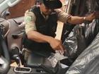 PRF e Ibama apreendem madeira ilegal, drogas e armas no Pará