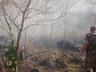 Dois são multados por colocar fogo em vegetação em Corumbá, MS