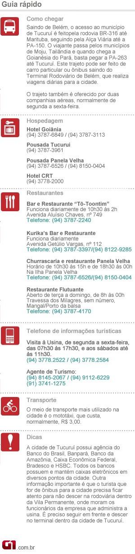 Infográfico Carnaval Tucuruí (Foto: G1/PA)