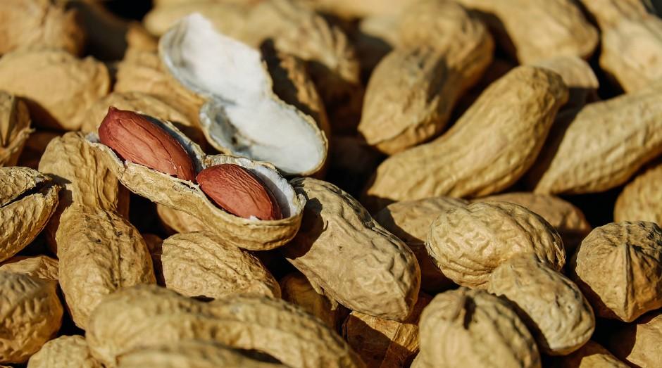 Nova forma pioneira de tratar a alergia combina um probiótico com imunoterapia oral (Foto: Pixabay)