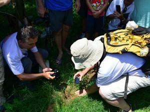 Renato e Maria Zucolotto averiguam local onde rocha caiu (Foto: Arquivo Pessoal/ Renato Poltronieri)