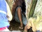 Ao tentar salvar coelho, adolescente fica preso por 2h em árvore no Paraná