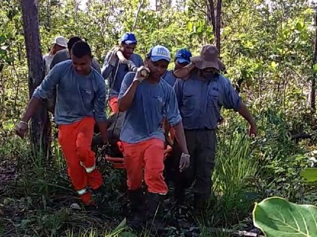 Trabalhadores e moradores ajudaram no resgate (Foto: Naturatins/Divulgação)