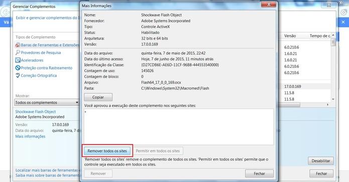 Clique em Remover todos os sites (Foto: Reprodução/Internet Explorer)