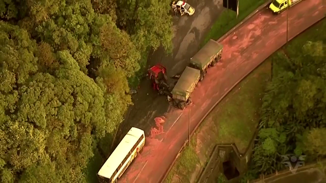 Caminhonheiro morre em acidente na Anchieta (Foto: Reprodução/TV Tribuna)