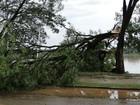 Número de cidades em emergência sobe para 41 em Minas Gerais