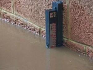 Nível do rio Aquidauana chega a 7,8 m e ribeirinhos ficam em alerta em MS (Foto: Rhobson T. Lima/O Pantaneiro)