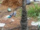 Polícia investiga roubo de motos com uso de cabo de aço no bloqueio de via