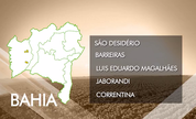 Bahia lidera a quinta posição de estados com casos de trabalho escravo (TV Bahia)