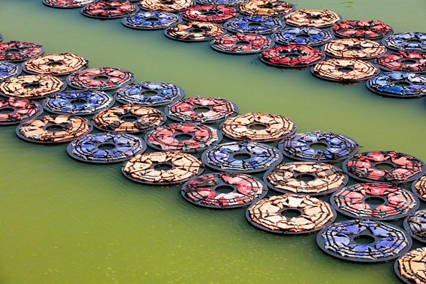 Obra 'F. Lotus' de Ai Wei Wei (Foto: Divulgação)