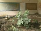 Abandono de prédio há pelo menos 2 anos preocupa vizinhos em Rio Claro