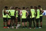 Primeira atividade do Botafogo no ES tem Montillo poupado e chuva de gols