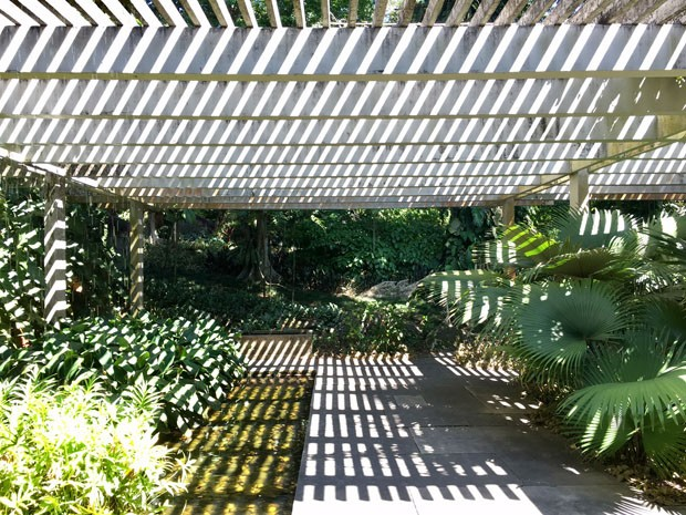 Um tour pelo sítio de Roberto Burle Marx (Foto: Flo Atelier Botânico)