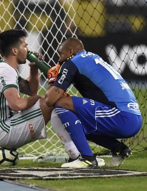 Palmeiras Jailson (Foto: André Durão)