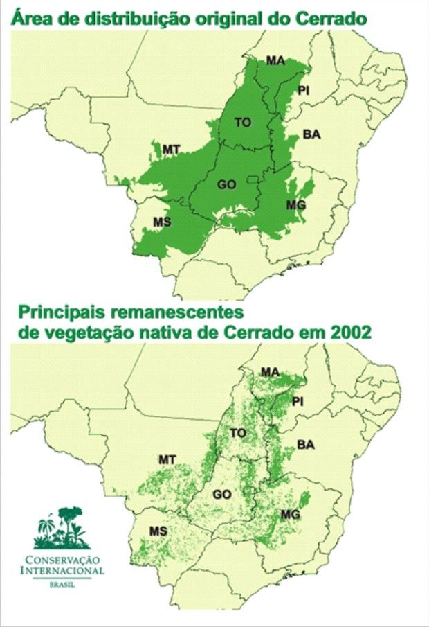 Cerrado original e em 2002 (Foto: Reprodução/ISPN)