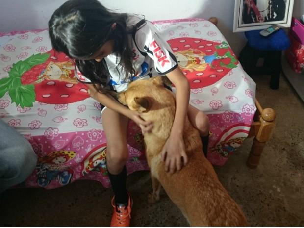 Cachorra acompanha menina por toda a casa (Foto: Gláucia Souza / G1)