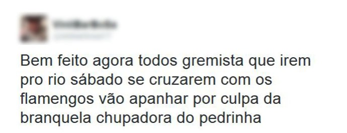 Torcedor do Flamengo manda recado para os gremistas (Foto: Reprodução/ Twitter)