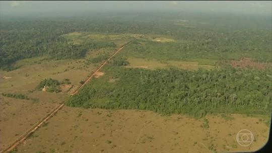 Amazônia: Temer diz a Gisele Bündchen que vetou reduzir áreas de preservação
