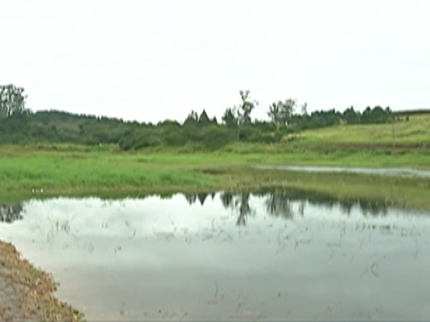 Sistema do Rio Jundiaí, em Taiaçupeba, distrito de Mogi das Cruzes (Foto: TV Diário/ Reprodução)