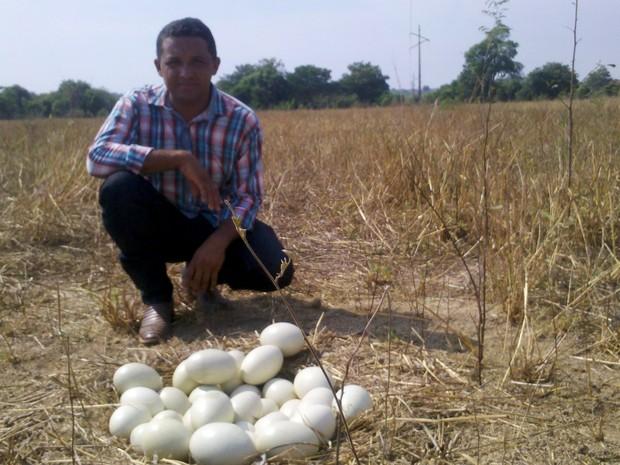 Gersonei Lustosa foi quem encontrou o ninho com os 36 ovos de ema (Foto: Clifton Morais/TV Anhanguera)