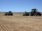 IBGE prevê safra de grãos 11,1% menor que em 2015