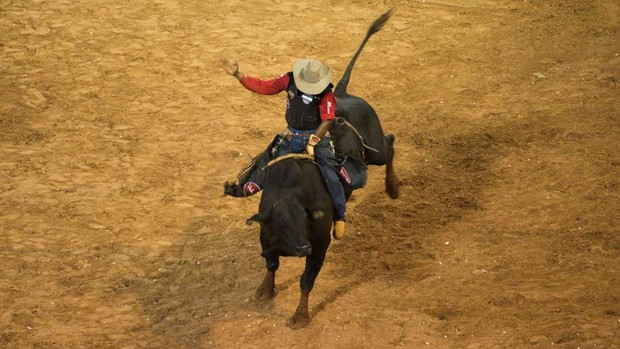Peão de Goiás vence o Rodeio Internacional (Érico Andrade/G1)