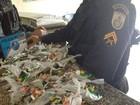 PM apreende adolescente que tentava esconder droga em Nova Friburgo, RJ