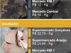 Preços de peixes variam entre R$ 5,98 a R$ 32,70 o quilo, em Porto Velho