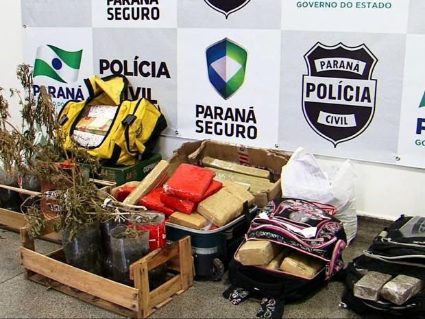 De acordo com a polícia, foram incinerados mais de 60 quilos de maconha – entre tabletes, buchas e pés, 5 quilos de crack e 127 gramas de maconha (Foto: Divonei Ravanello Jr/RPC)