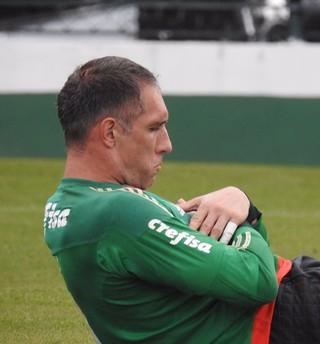 Fernando Prass Palmeiras (Foto: Rodrigo Faber)
