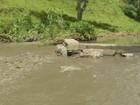 Tocos do Moji capta água de nascente após lama atingir rio no Sul de MG