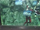 Papai Noel troca chaminé por aquário e encanta crianças em Santos, SP
