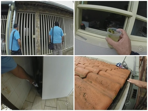 Rotina de agentes consiste em visitar casas e localizar irregularidades (Foto: Reprodução/ TV TEM)
