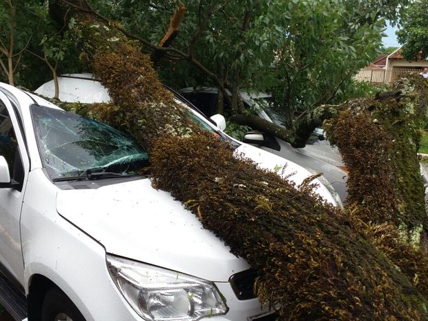 Ventos de 100 km/h causaram estragos em Cianorte (Foto: Luiz Carlos Carvalho / RPC)
