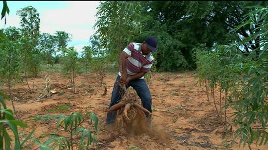 Chuva em Petrolina não foi suficiente para o abastecimento das áreas rurais