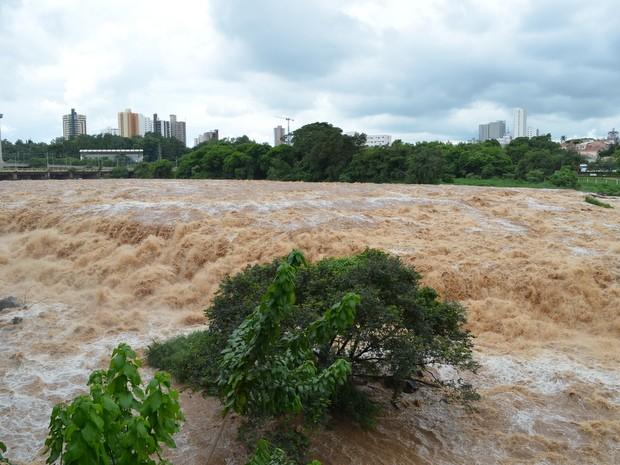 Rio Piracicaba na manhã deste domingo (22); nível chegou a 3,11 metros (Foto: Araripe Castilho/G1)